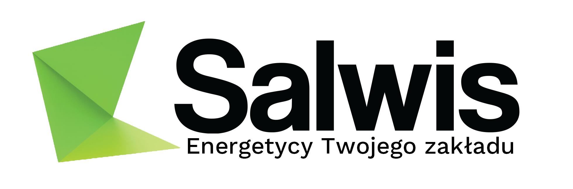 Salwis – pomiary elektryczne i termowizja